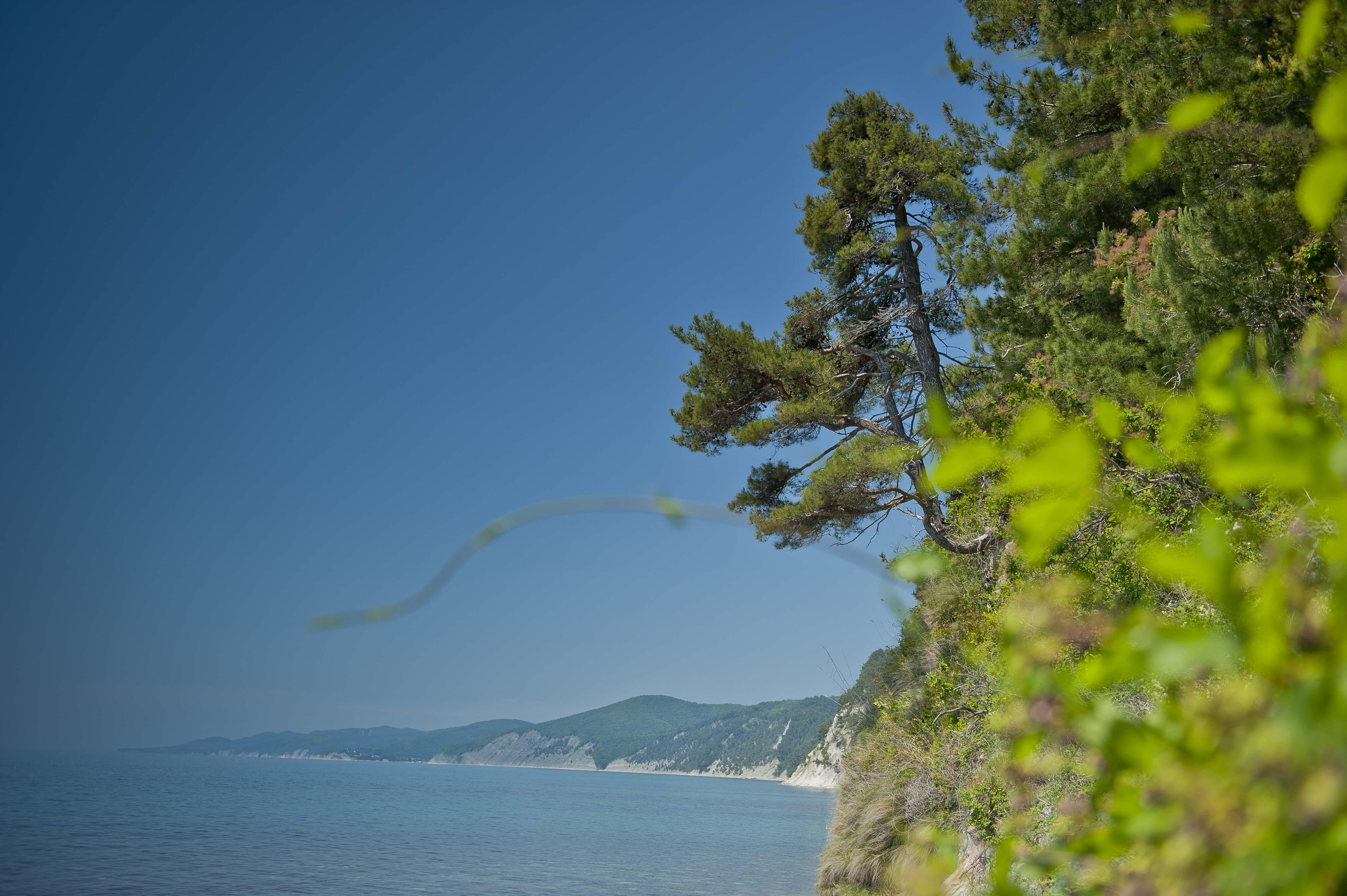 Базы отдыха бухта инал фото пляжа и поселка